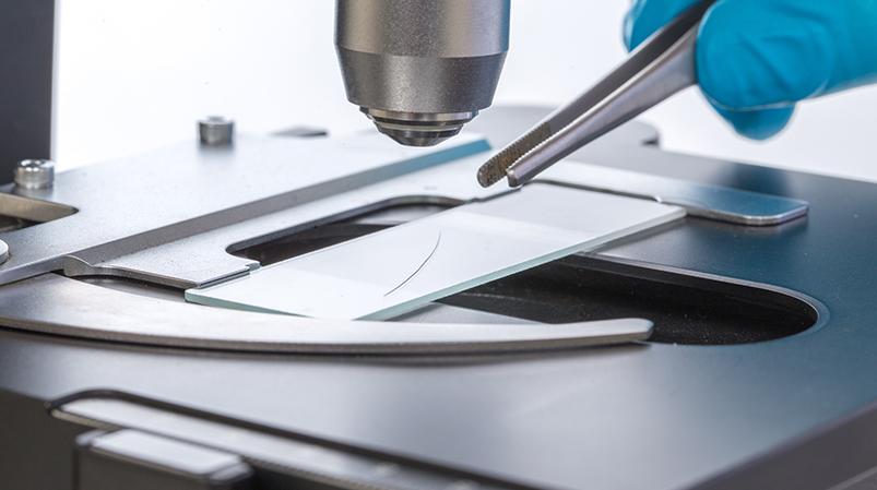 Analiza pierwiastkowa włosa podmikroskopem