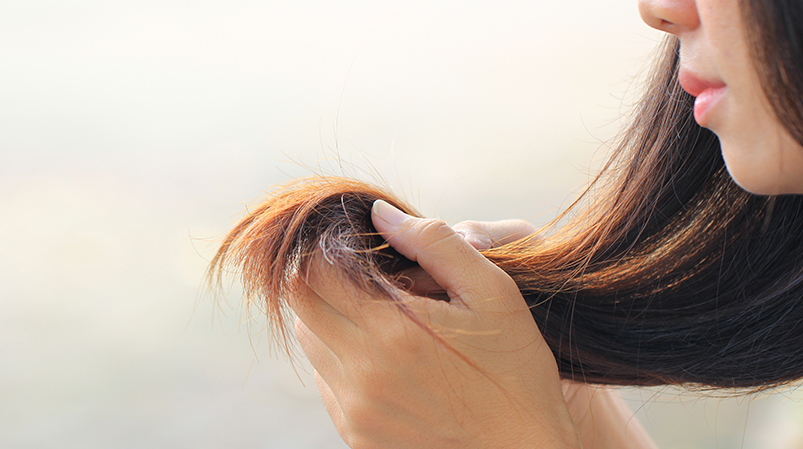 Masło cupuacu nabardzo suche włosy